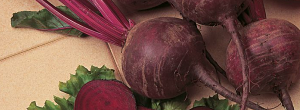Tips On Growing Beetroot